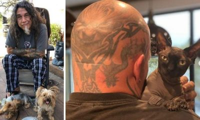 kerry king tom araya mascotas